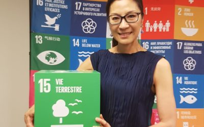 "Interview with Michelle Yeoh: ""Our clothes are a mirror reflection of what is going on in our environment"""