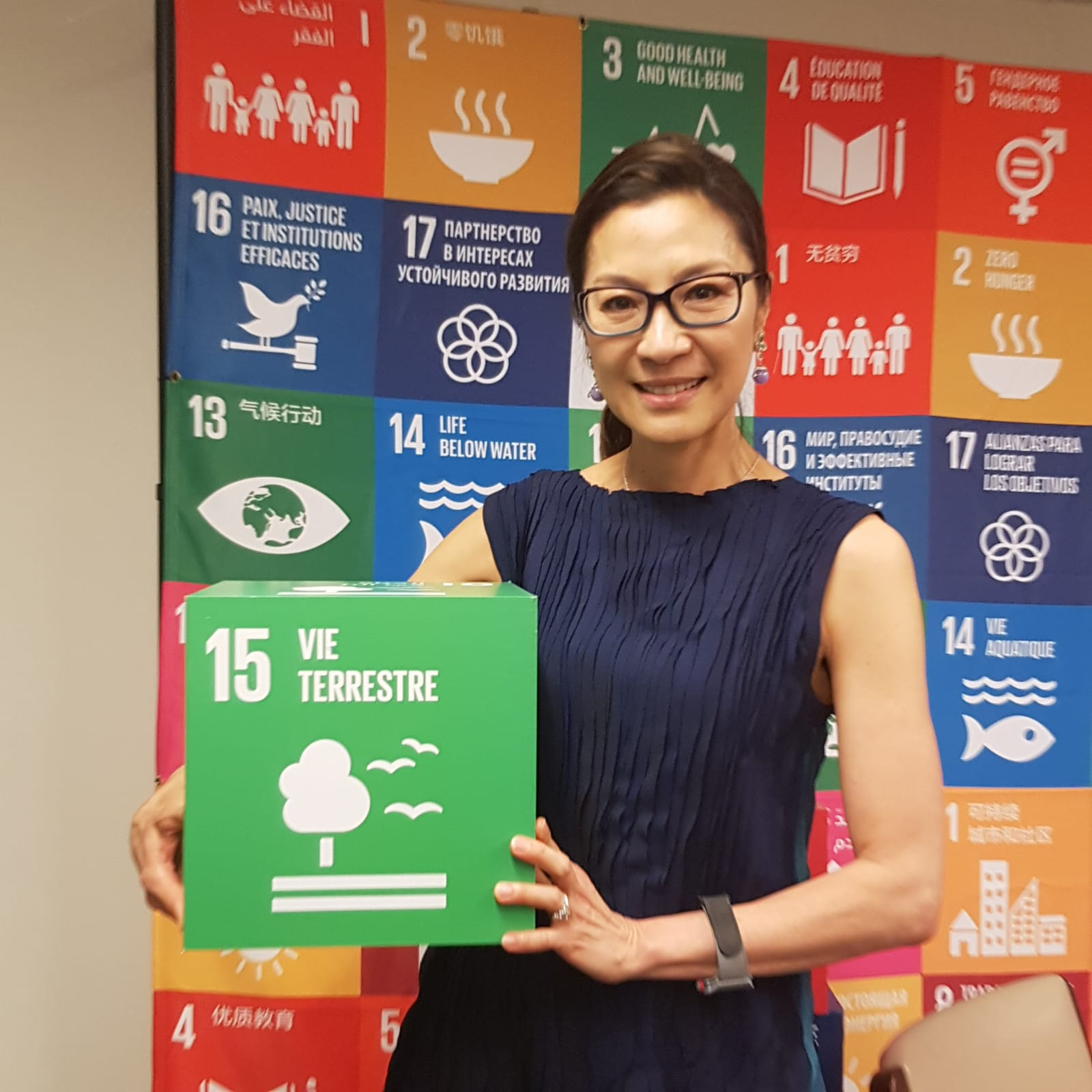 UNDP Goodwill Ambassador Michelle Yeoh at the High-Level Political Forum in New York 2018. ©UNECE/FAO