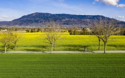 Spend Your Summer in the Geneva Countryside | Promenades autour de Genève