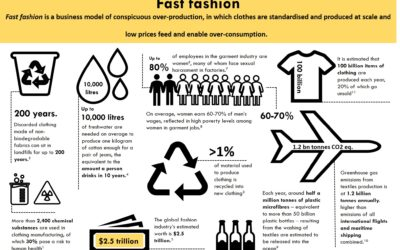 "The ""fast fashion"" business model"