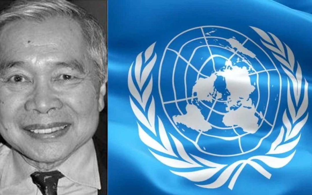 Le drapeau de l'ONU en guise de bouclier